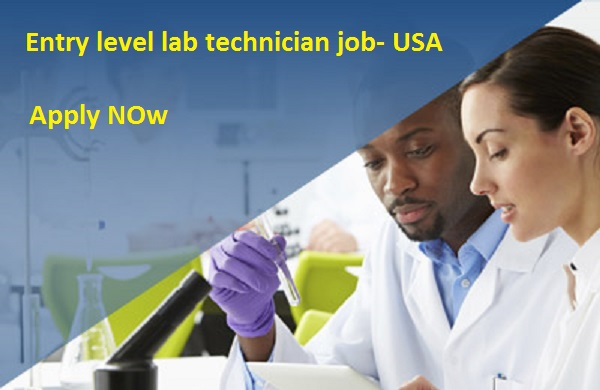 Entry Level Lab Technician Jobs