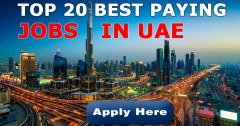 Best Paying Jobs in UAE