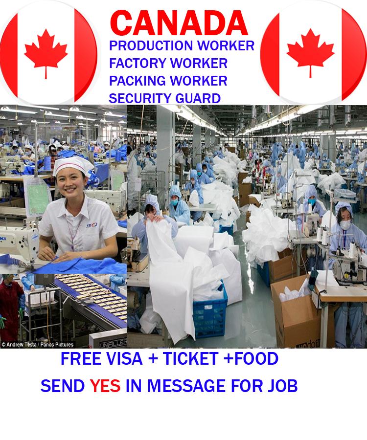 Farm Worker Job in Canada